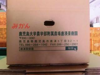 CIMG0684.JPG